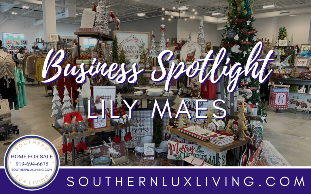 BUSINESS SPOTLIGHT: LILYMAES