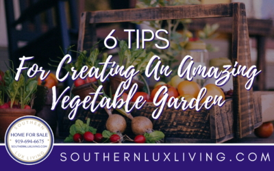 6 Tips For Creating An Amazing Vegetable Garden