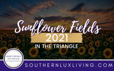 Sunflower Fields 2021 In The Triangle